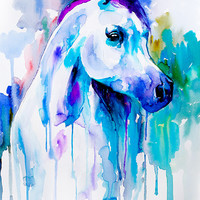 Arabian horse watercolor painting print, animal, illustration, animal watercolor, animals, portrait, blue, watercolor