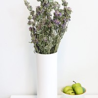 "Dried and Fragrant Lemon Mint in Purple - 3oz Bunch - 14""-20"" Tall"