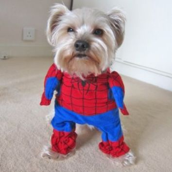 Alfie Pet by Petoga Couture - Superhero Costume Spiderman - Size: XS