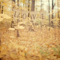 All is Love - Autumn Photograph, Yellow Leaves in Forest
