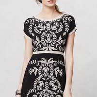 Embroidered Ombra Shift