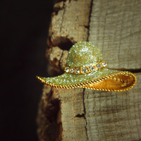 Hat Brooch #5160