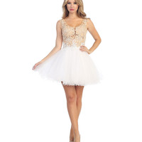 Champagne & White Lace & Tulle Illusion Short Dress 2015 Homecoming Dresses