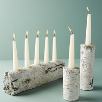 Shimmering Bark Candle Holder