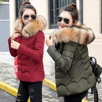 Winter Jacket women 2018 warm Winter Coat Women Fake Fur Hooded Down Jacket Women Parkas Slim Female Short outerwear