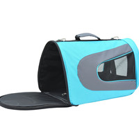 Small Pet Airline Carrier
