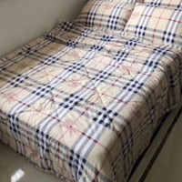 BURBERRY summer cold water washing cotton air conditioning quilt