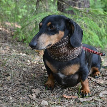 Fashion Dog Neck Warmer for Small Dog Hand Knitted READY TO SHIP Snood Striped Brown Scarf for dog