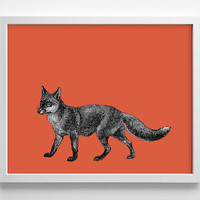 Fox With Pop Color, Vintage Engraving, Simplistic, Cute, Minimalist, Colorful Office, Kitchen, Home, Nursery Decor, Unique Gift, Poster