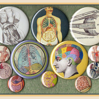 "12 unique Anatomy MIXED SIZE set 1"" inch buttons AND 2.25 aka 2 1/4 inch vintage oddity button set"