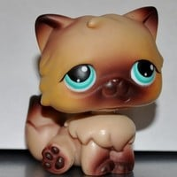 Persian #22 (Cat, Brown, Blue Eyes, Brown Tips) Littlest Pet Shop 2004 (Retired) Collector Toy - LPS Collectible Replacement Single Figure Loose (OOP Out of Package)