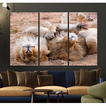 Lions on Africa Savannah Large Wall Art Canvas Print