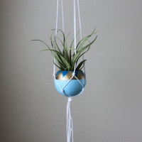 White Macrame Air Plant Hanging Planter with Air Plant - Teal, Aqua, Gold, and White