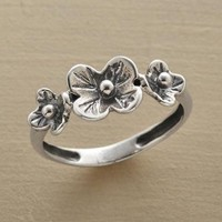 CORSAGE RING         -                Rings Under $100         -                Rings         -                Jewelry         -                Categories                       | Robert Redford's Sundance Catalog