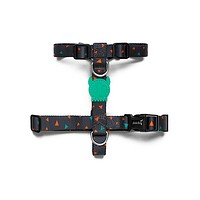 Triangles | H Harness