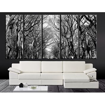 LARGE CANVAS ART Dry Trees on Park Canvas Painting Great Tree Silhouette Canvas Print Ready