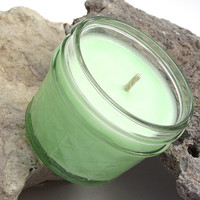Duck Farts scented Soy Candle - Fluorescent Soy Candle -- 4 ounce Jar