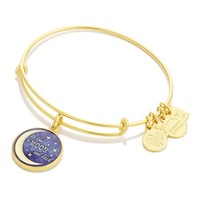 Stellar Love Charm Bangle | Edesia