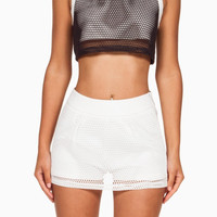 (anh) Sporty mesh cropped black top