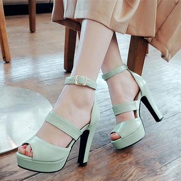 Cross Straps Open Toe Platform Heels Sandals 2426