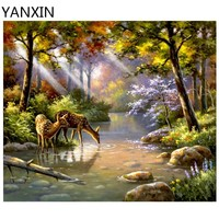 YANXIN DIY Frame Painting By Numbers Oil Paint Wall Art Pictures Decor For Home Decoration 949