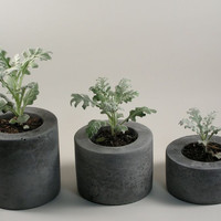 Round Grey Concrete Pot Set