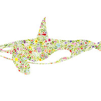 """Floral Orca PRE-ORDER - Print of Watercolor Painting 8x10"""" and 10 Dollar Donation to Charity"""