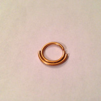 Shiny Gold Double Septum Ring