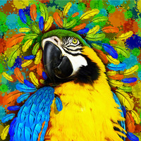 Gold and Blue Macaw Parrot Fantasy Art Print by BluedarkArt