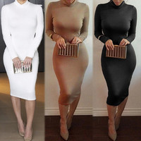 FASHION BODYCON HIGH COLLAR DRESS