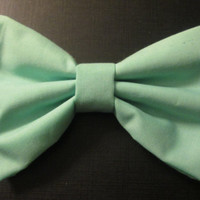 Mint Green Hair Bow with French Barrette clip