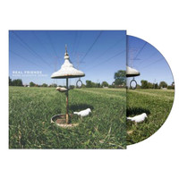 Real Friends: More Acoustic Songs (Pic Disc) Vinyl LP (Record Store Day)