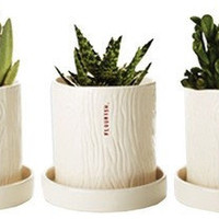 Home Accessories - Decor: - At Home - Dressed.ru