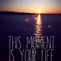 this moment is your life Art Print by Sylvia Cook Photography | Society6