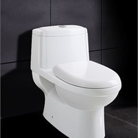 Ariel Platinum Anna Contemporary One Piece White Toilet 27x16x24.6