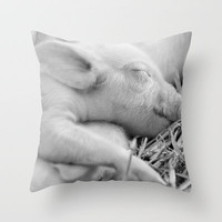 Baby Pig Sleeping Throw Pillow by Karl Wilson Photography