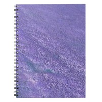 Monsta notebook blue