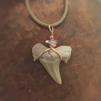 Shark Tooth Necklace / Shark Tooth with Quartz Copper Wire / Shark Tooth Jewelry, Fossilized Shark Tooth Pendant, Fossil Jewelry Shark Teeth