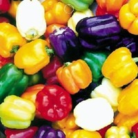 Wotefusi 20pcs Colorful Sweet Pepper Seeds Plant DIY Garden Home