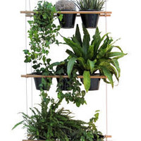 Etcetera Window box - Vegetable screen Natural wood by Compagnie