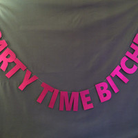 Party Time Bitches Banner/ Photo Backdrop/ Birthday Party Banner/ Bachelorette Party Banner/ Party Decoration