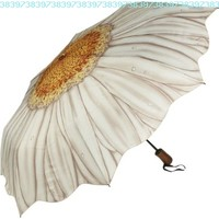 Galleria White Daisy Folding Umbrella:Amazon:Clothing