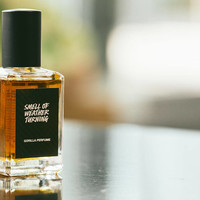 The Smell Of Weather Turning Perfume