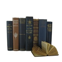 Brown and Blue Decorative Book Set, S/7