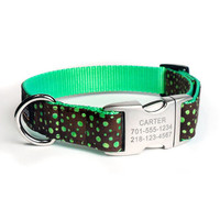 Designer Dog Collar With Personalized Buckle - Carter