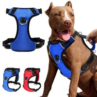 Quick Control Nylon Dog Harness