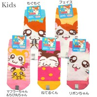 And cum Hamtaro ◎ kids socks ☆ animated character toy (children's socks) store ☆ ◆ fs3gm 3500 Yen coupon distribution during → 11 / 7 AM until 1:59