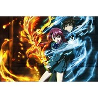 Kaze no Stigma Anime Wall Scroll Poster Golden Darkness(24''*16'')support Customized