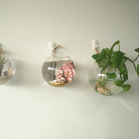 A set of 3 large opening round wall hanging terrariums// indoor planters// wall glass fishbowl// home decoration//wall decor