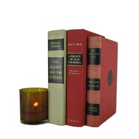 Farmhouse Rustic Decorative Books in Neutral and Red